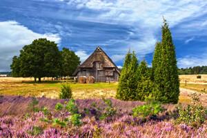 Holzhütte in Lüneburger Heide