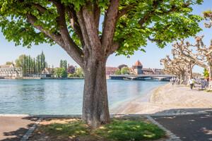Promenade am Bodensee