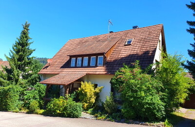 Einfamilienhaus im Grünen mit Einfahrt