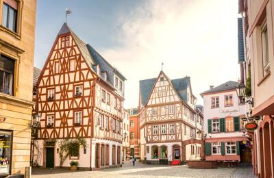Kirschgarten in Mainz