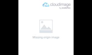 Makler im Kundengespräch