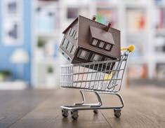 Modellhaus im Einkaufswagen