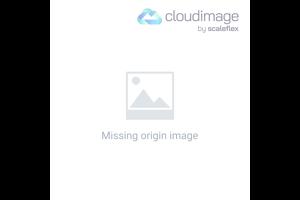 Miniaturhaus mit Geld
