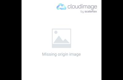 Nahaufnahme einer Tür mit Eisenklopfer