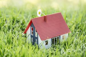 Modellhaus im Gras