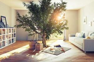 Baum in der Mitte eines Zimmers