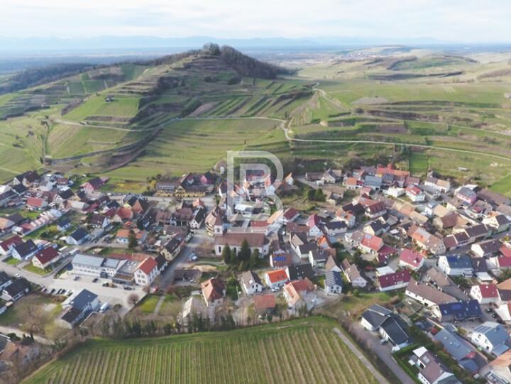 Leben zwischen den Weinbergen im Winzerhof