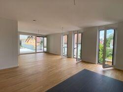 Wohn-Essbereich mit Terrassenzugang