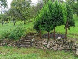 Zugang Gartengrundstück