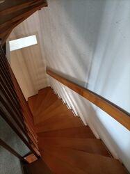 Treppenhaus Buche