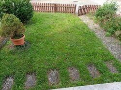 Vorgarten zur Haustür