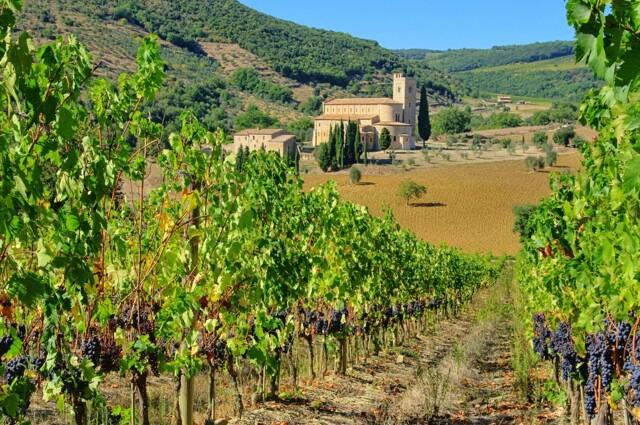 Großes Weingut in Italien